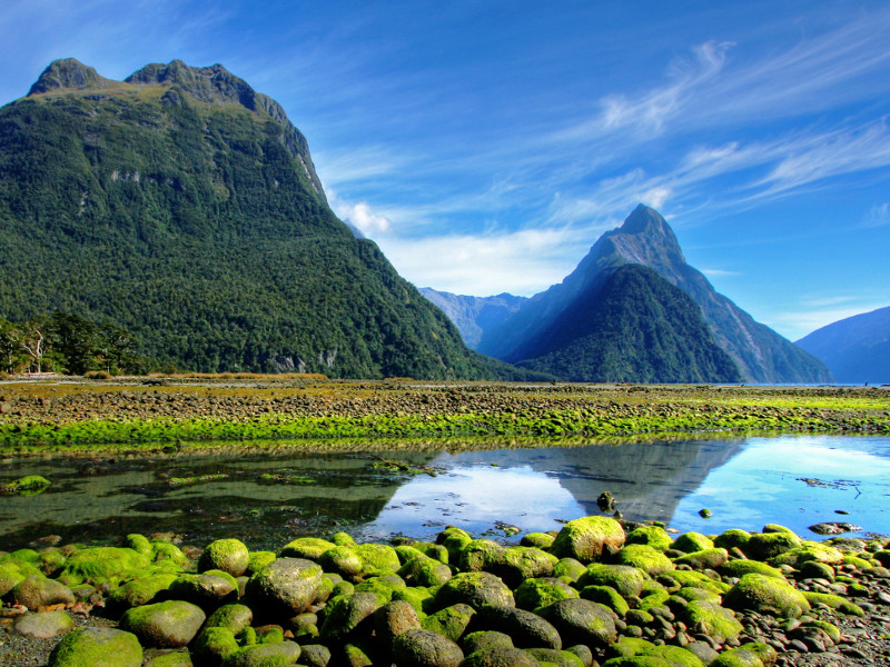 immigration new zealand working holiday visa